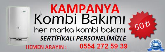 kombi-bakimi-servisi